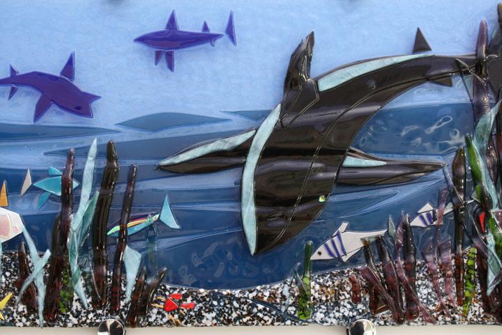 Sharks Panel